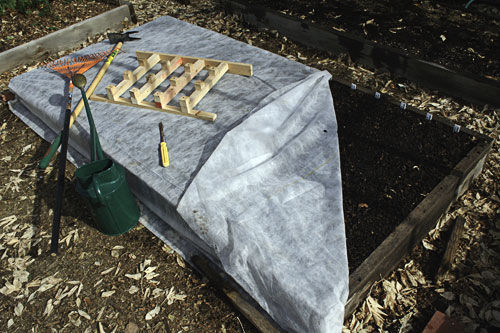 укрытие озимого чеснока на зиму агроволокном