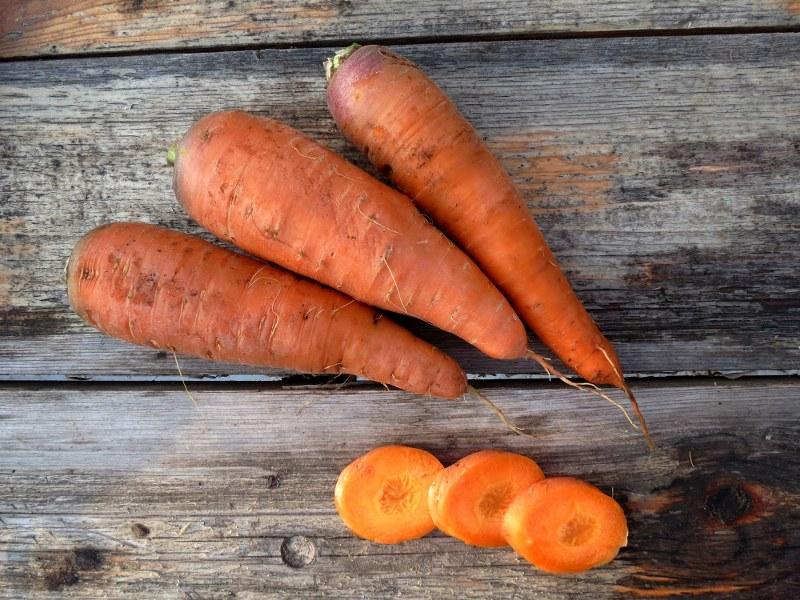 хорошие сорта моркови для хранения на зиму