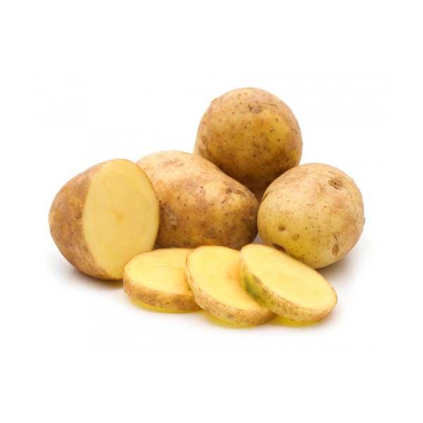 характеристика картофеля сорт гала