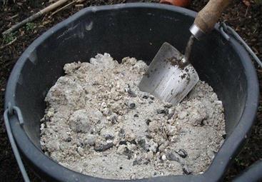 обработка золой от лукового клеща