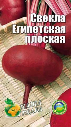 Сорт свеклы Египетская