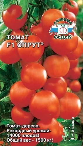 томат спрут семена