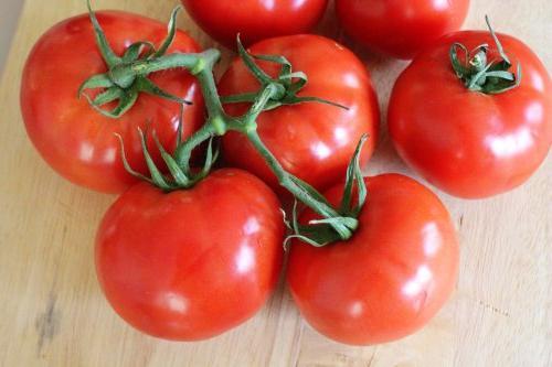 помидоры благовест описание