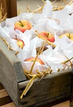 хранение яблок лобо