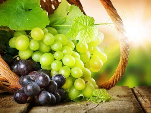 виноград агрус