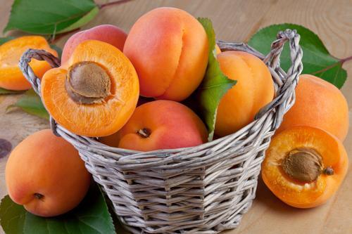 Подкормка абрикосов