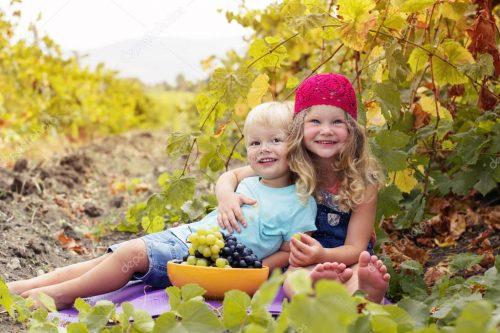 дети и виноград