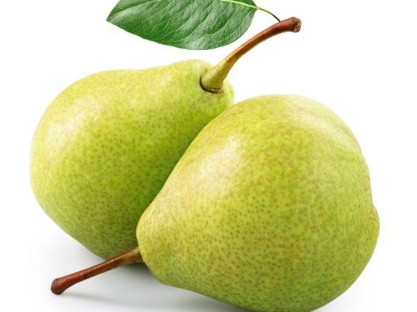 Сочная и сладкая груша Есенинская